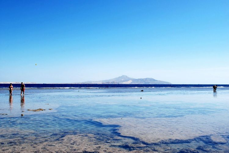 Relaxing Еgypt RedSea Traveling Hello World