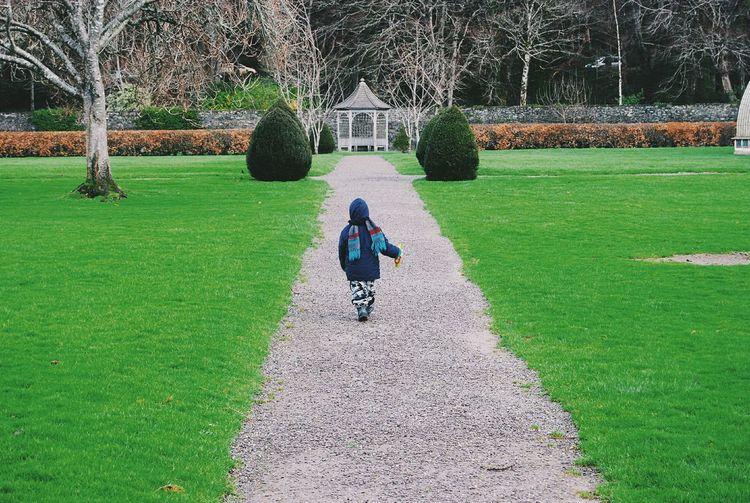 Boy Walking Around Footpath Grass Green Killarney  Trees Wall Small Building Winter