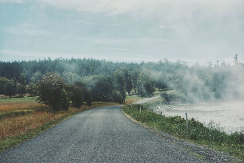 The mist coming off of False Bay . San Juan Islands Misty Beach Photography Trees Curving Road Nature Landscape Washington State Fine Art Photography