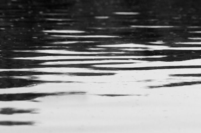 Ripples in the water. London, Ontario. Abstract Photography Abstract Nature Black & White Ripples Serenity Tranquility Abstract Black And White Blackandwhite Canon Close-up Day Lake Nature Outdoors Puddle Reflection Ripples In The Water River Serene Outdoors Still Life Tranquil Scene Tranquillity Water