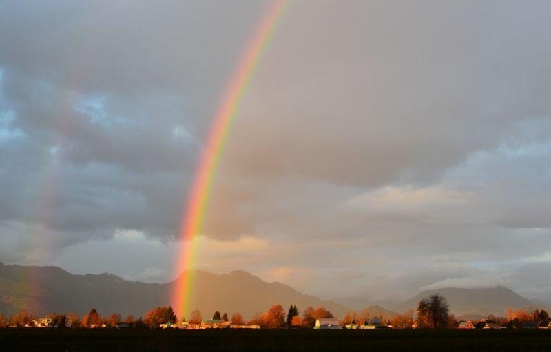 Rainbow Sky Collection EyeEm Nature Lover