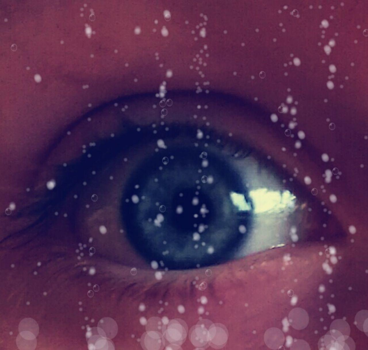 human eye, human body part, one person, real people, sensory perception, close-up, eyelash, eyesight, looking at camera, eyeball, portrait, iris - eye, indoors, day, people