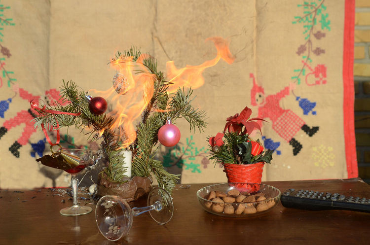 Fire in a Christmas decoration. This is an arranged situation. Candle Flames Panic Pine Celebration Christmas Decoration Close-up Day Fire Hazard Home Interior Indoors  No People Table