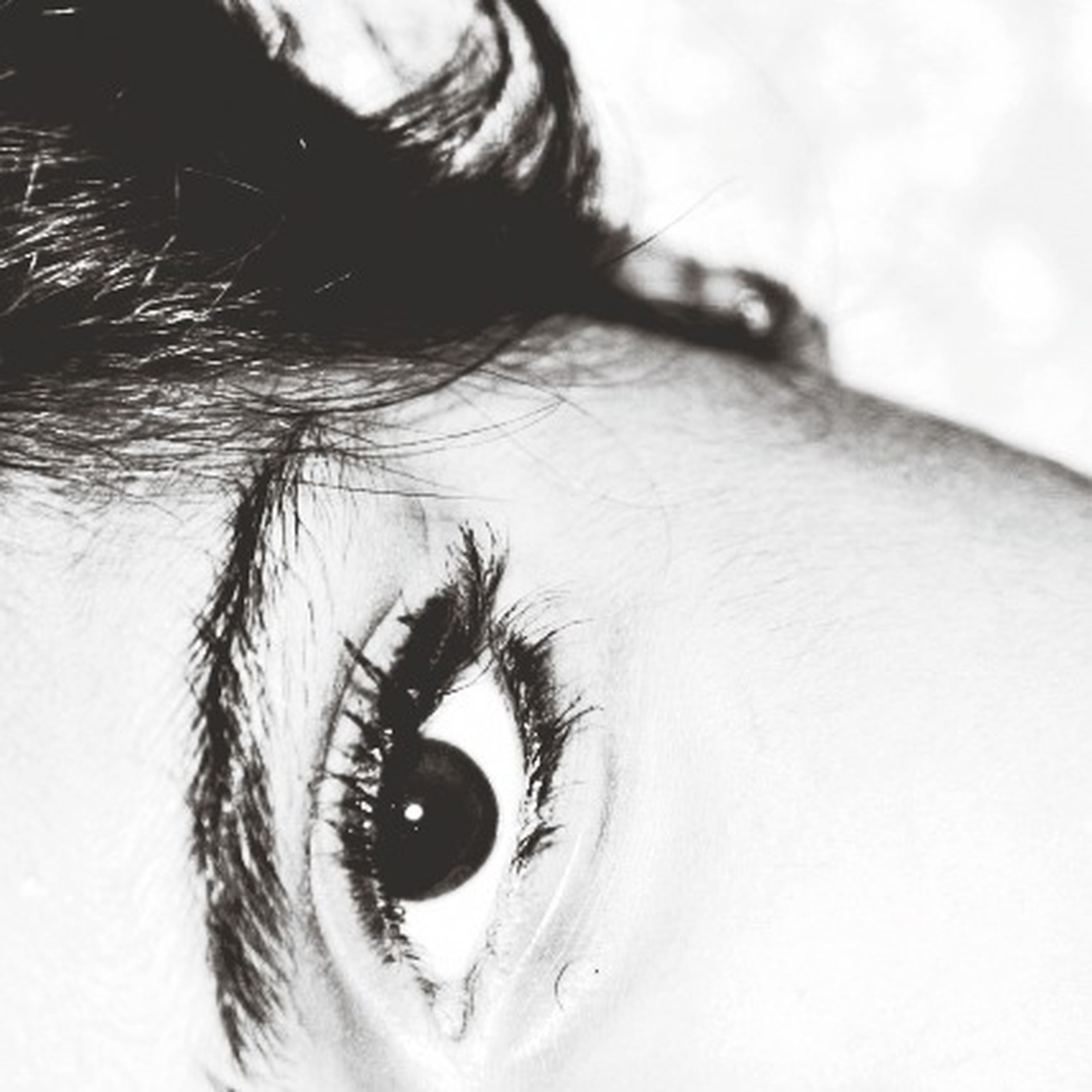 close-up, human eye, indoors, eyesight, sensory perception, part of, eyelash, lifestyles, studio shot, person, human skin, unrecognizable person, white background, cropped, leisure activity, iris - eye, vision