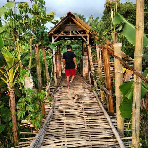 Kece badai jembatan rotan di belakang rumah Kknmbantardawa Kknmunpad