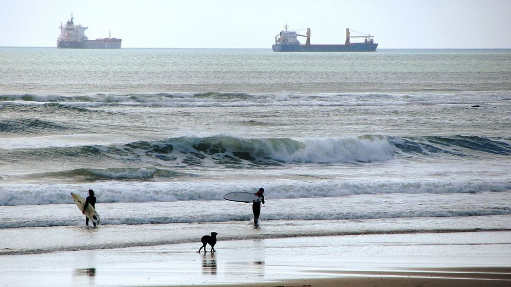 Watching the ships surfers and the dog.. LOL.. Beachphotography Surf Photography Beach Photography Dog Life Dog Days Taking Photos At The Seaside Surfers Enjoyng The View Taking Pictures