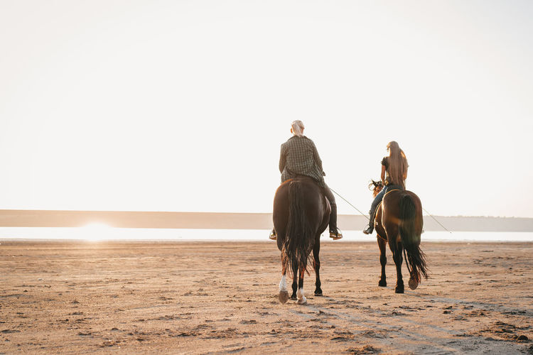Rear view of people horseback riding at beach