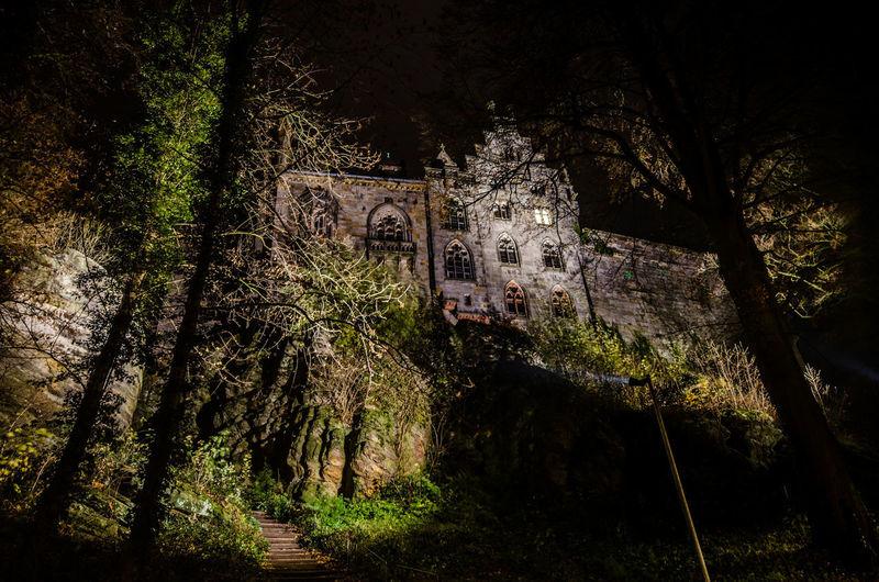 Nightphotography Castle Alley Tree Close-up Sky