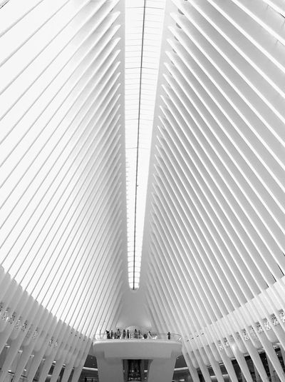 Morning cathedral Architecture Indoors  Modern Built Structure Pattern Low Angle View No People Architectural Design Manhattan White Bright Bright Interior