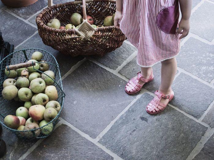 Lifestyles Apples Autumn Mood Child Autumn Lifestyle Photography Country Life Harvest Fruit Baskets Baskets Of Food Foodphotography Simple Life