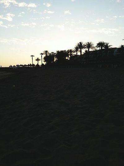 Beach PALMTREES 🌴🌴🌴 Sunset Spain💕 💋holidays