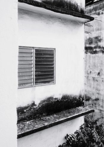 The dilapidation of the old white building Dilapidated Building Dilapidation White Building Old Buildings Louver Louver Windows Black And White Background Wall Cement Wall Old Wall Window Architecture Building Exterior Close-up Built Structure Air Duct