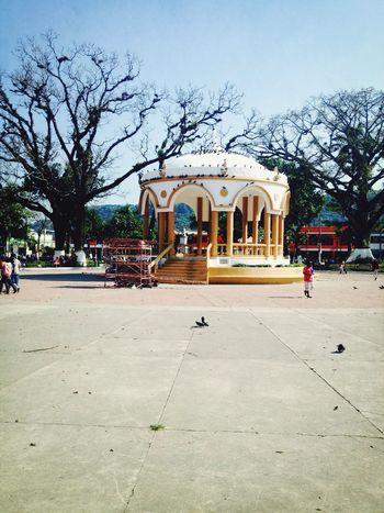 Parque Daniel Hernández Taking Photos Walking Around