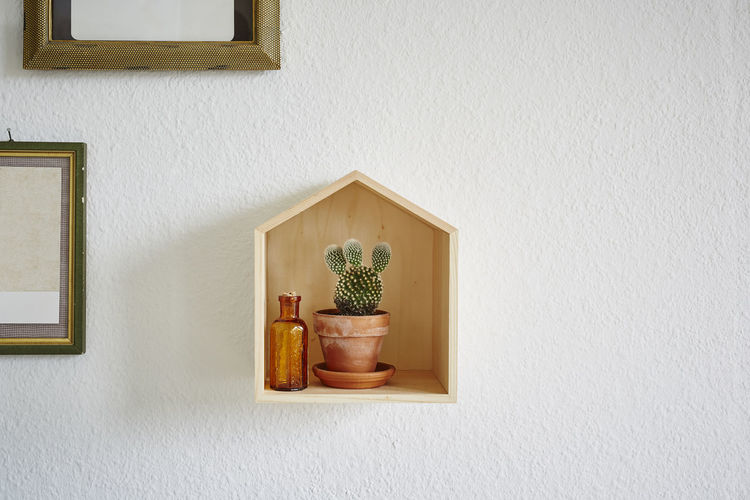 Wall - Building Feature No People Potted Plant Built Structure Indoors  Architecture Plant Picture Frame Wood - Material Decoration Frame Shelf Container Still Life Day Home Interior Art And Craft Nature Window Arrangement