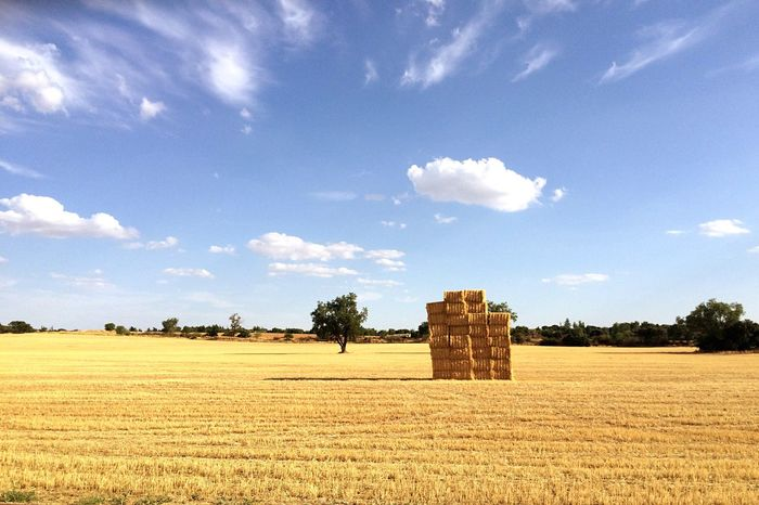 Una Pila de Heno en el Campo Amarillo en Madrid España Madrid, España Españoles Y Sus Fotos