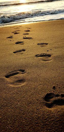 Foot Steps Water Wave Sea Beach Sand Sunlight Sunset FootPrint Shore Horizon Over Water Sandy Beach