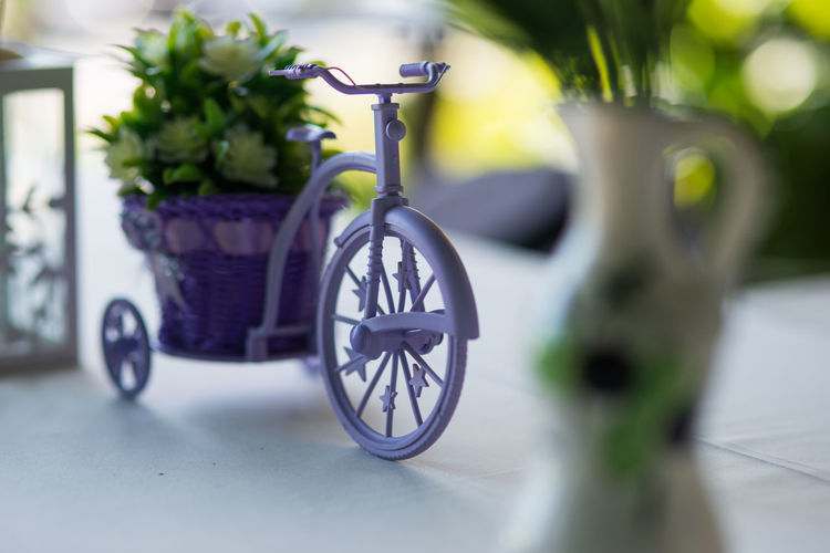 Bicycle toy Bicycle Toy Decoration Flower Flowering Plant No People Plant Nature Vase Mammal Day Outdoors Transportation Animal Potted Plant Focus On Foreground Table Vulnerability  Animal Themes Domestic Animals Selective Focus Wheel Toy Car