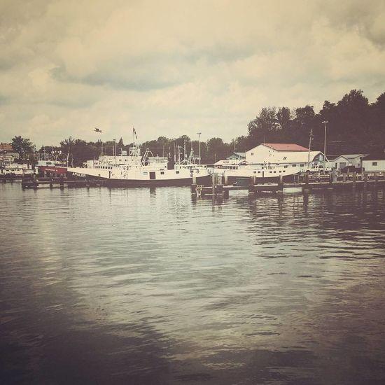 Port Dover Canada Lake Lake Erie Old On Ontario Port Dover Portdover Ship Vintage First Eyeem Photo