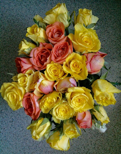 Bouquet Coral Fading Flower Head Flowers Freshness Jolly Colours Pastel Pink Roses Tender Tenderness Withering Yellow