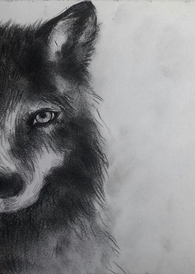 Drawing by me Drawing Draw Blackandwhite Dog Art