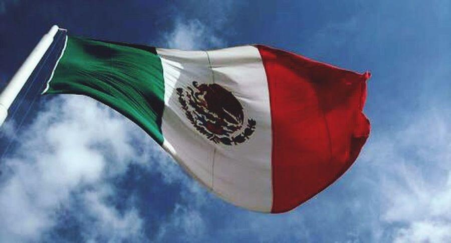 ¡Fuerza México! 💪🏻 Saldremos adelante hoy y siempre. Staystrongmexico Patriotism Siemprecontigo Flag Day Pride Fuerza Unidos  Alwaystogether