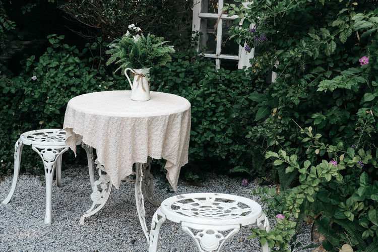 Backyard garden Plant Nature Seat No People Chair Day Front Or Back Yard Garden Outdoors Table Formal Garden Ornamental Garden
