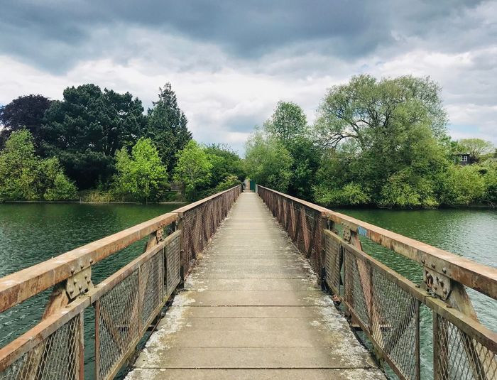 Bridge Over Water Bridge Over Water Bridge Tree Plant The Way Forward Cloud - Sky Sky Direction Nature Diminishing Perspective Water Railing Day Tranquility Tranquil Scene Connection No People Growth Beauty In Nature Scenics - Nature Outdoors Footbridge
