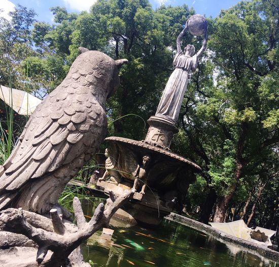 Universityofsantotomas Eyeem Philippines