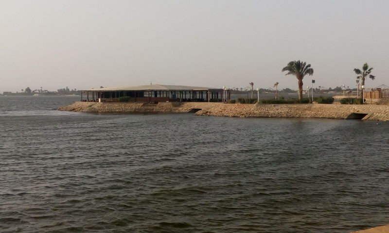 fayoum EyeEm Nature Lovers Tourism Fayoum Egypt Traveling Travel Destinations Eyeem Market EyeEm Best Shots Beach Beauty In Nature Day Finding New Frontiers Nature No People Outdoors Palm Tree Sea Sky Tree Water Finding New Frontiers Sony Xperia Welcome Weekly. EyeEmNewHere