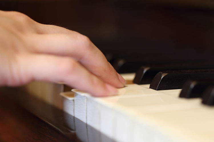 Piano Music Keyboard Hands Instrument Musical Playing Pianist Wood Musician Hand Classical Player Closeup Concert Entertainment Sound Song Melody White Play Close Up Jazz Black Note Performance Fingers Old Keys Classic Finger Key Chord Art Artistic Vintage