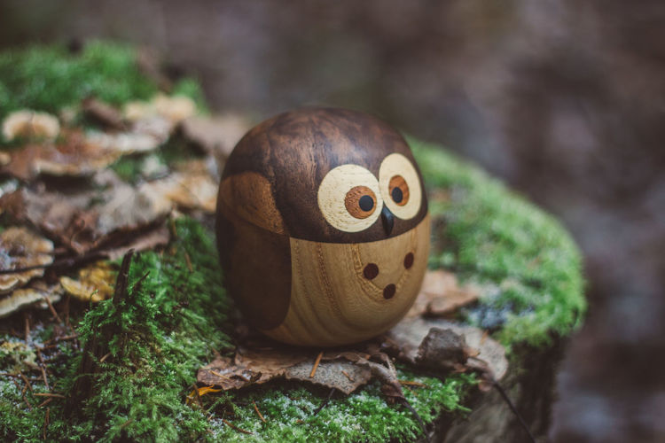 Forest Wood Wooden Wood - Material Toy Toys Wooden Toys Moss Tree Owl Close-up No People Focus On Foreground Art And Craft Creativity Day Representation Still Life Nature Craft Food And Drink Selective Focus Face Food Anthropomorphic Plant Anthropomorphic Face Tree Trunk Outdoors