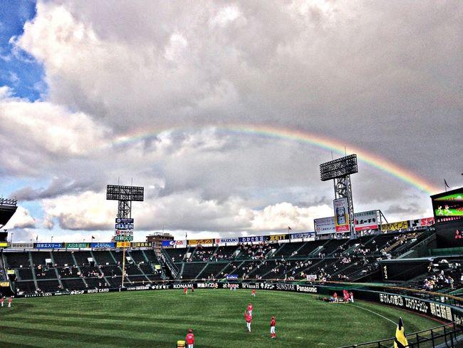 Baseball Rainbow 野球 阪神タイガース