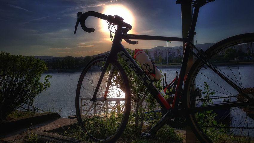 Bicycle Margaret Island Hungary, Budapest Sports Photography