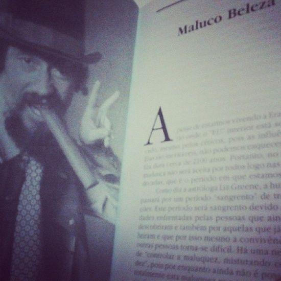Book RaulSeixas Book