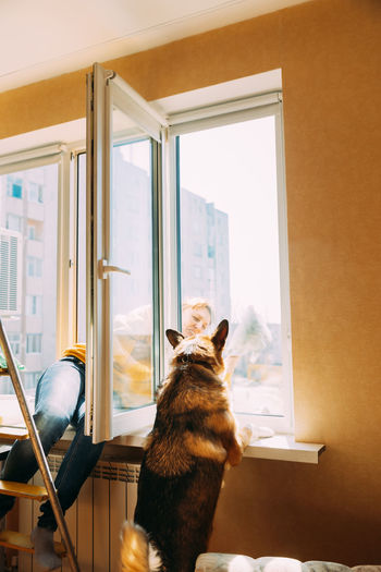 Woman of fifty in yellow sweater washes dusty window in apartment.