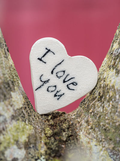 Close-up Communication Day Heart Shape Love Message Nature No People Outdoors Rock - Object Text Textured