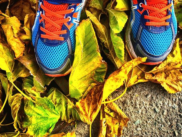 Child Foot Feet Foot Sneakers Fallen Leaves Fall Autumn Autumn Leaves Leaf Leaves Child Shoe Outdoors Pair Nature Blue Sport Shoes Standing Yellow Paint The Town Yellow