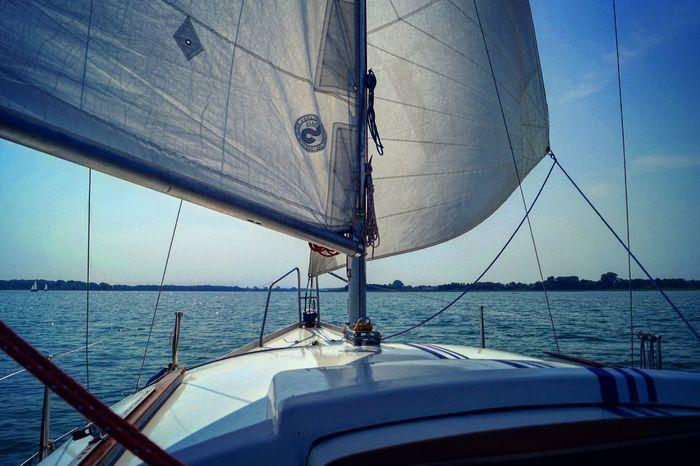 Lake View Lake Powidzkie_lake Jezioro_powidzkie Wielkopolska Sailing Sailboat Beautiful Nature Beautiful Landscape Poland