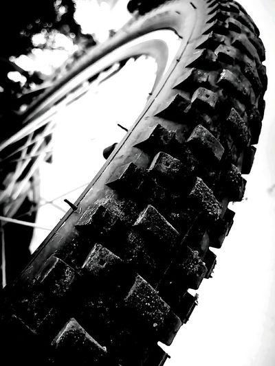 Chillilens Track First Eyeem Photo