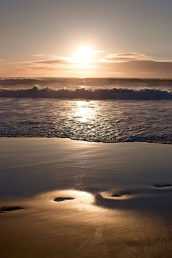 Norooma sunset with footprints in the sand Sunshine Water Sea Low Tide Sunset Beach City Sun Sunlight Swimming Business Finance And Industry Seascape Coast Rocky Coastline Coastline Ocean Surf Calm Wave