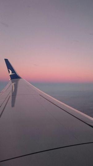 Airport Flight Aircraft Aircraft Wing Wing From An Airplane Window Window Skyporn Sunrise Anadolujet Izmir To  Ankara Nofilter Nofilternoedit Horizon Redblue Faded Thy
