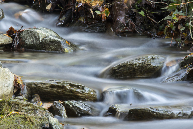Beauty In Nature Blurred Motion Day Flowing Water Forest Long Exposure Motion Nature No People Outdoors Rapid River Rock - Object Scenics Silk Silk Effect Tree Water Waterfall Be. Ready.