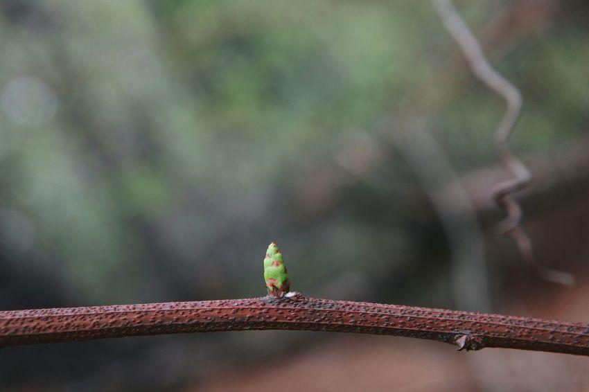 삼님을담다 | Small And Big Potential  Greeneye Onlyyou Sololife 바른생태살림원 | be the Nature