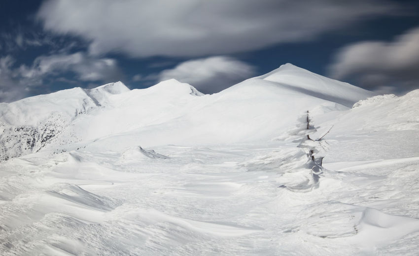 Winter landscapes from Rodnei Mountains, Romania. Frozen Ice National Park Nature Tree Weather Winter Wintertime Blizzard Cloud - Sky Cold Temperature Landscape Mountain Mountain Range Outdoor Peak Range Scenics Snow Snow Covered Snowcapped Mountain White Wind Windy