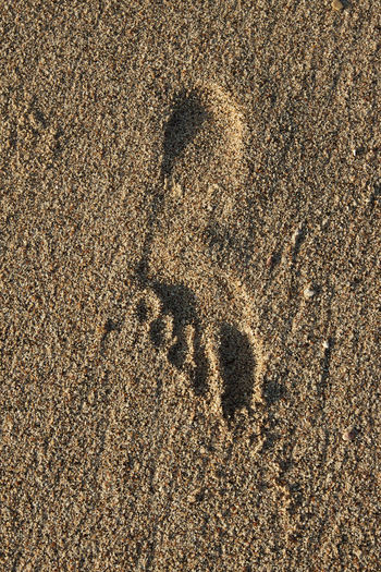 footprint Foot Prints Sand Sandy Beach Sand Footprints Sand Beach Patterns Sand Beach FootPrint Footprint In The Sand Footprint In The Sand Beach