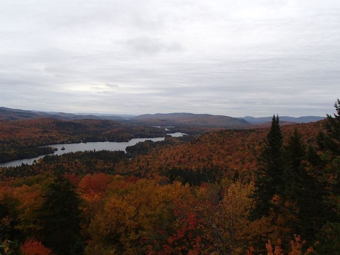Lac Provost et Laurentides Foliage Fall Colors Lake Beauty In Nature Plant Sky Tranquil Scene Scenics - Nature Tranquility Cloud - Sky Mountain Landscape Nature Autumn Outdoors
