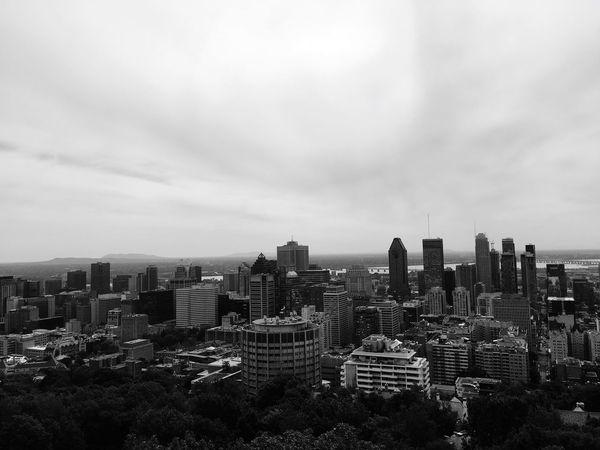 Mont Royal Black And White Montréal Canada Building Exterior Built Structure City Architecture Cityscape Sky Building Nature Outdoors
