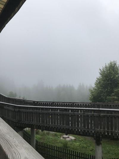 TBT  Rainy Days