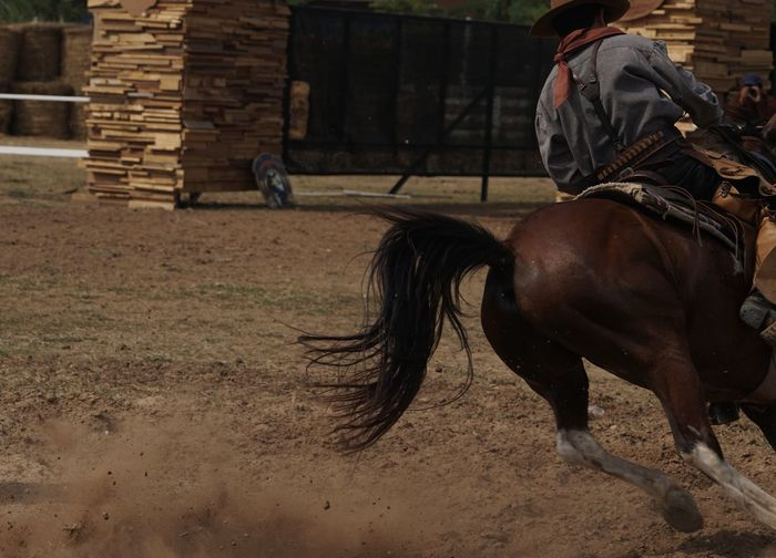 Men riding horse in stable