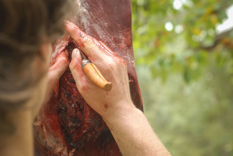 Cropped Image Of Man Cutting Meat